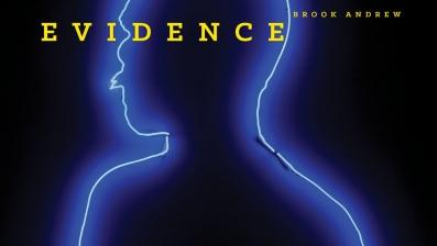 brook_andrew_book_cover.jpg